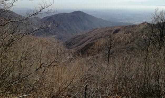 Monte Martica