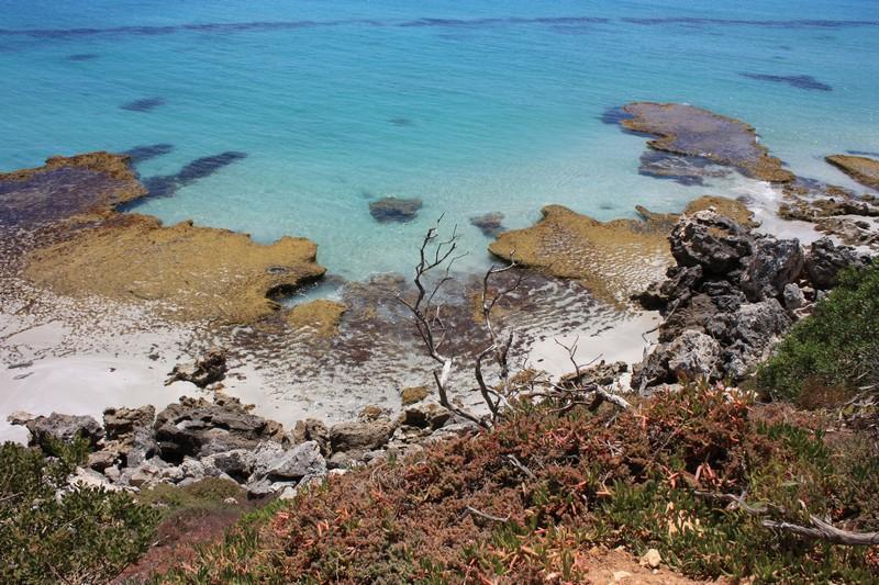 Kangaroo Island: Sud