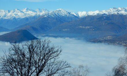 Monteggia-Poggio Sant'Elsa